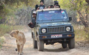 Sasan Gir National Park